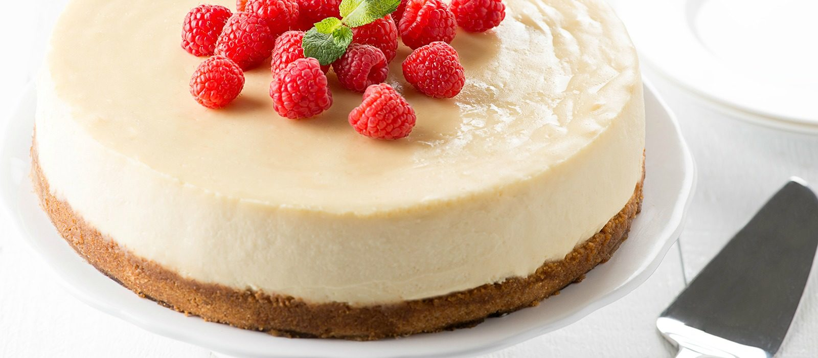 Greek Yogurt Cheesecake | Alberta Milk