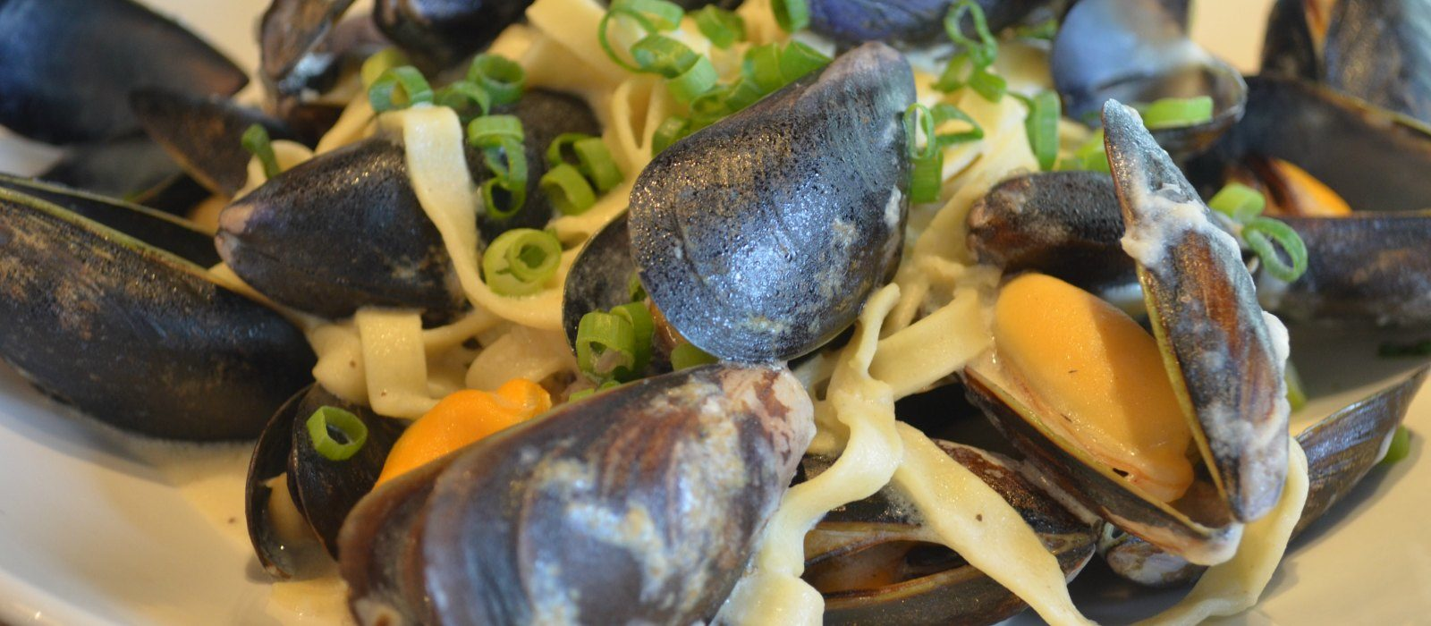 Creamy Mussels with Garlic, Parmesan and Pasta